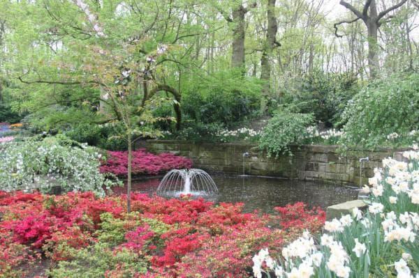 сады в голландском стиле