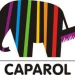 Декоративная штукатурка Caparol — качество, гарантия, изыск