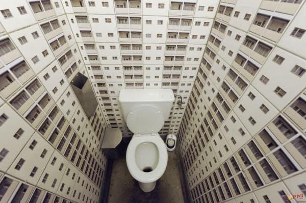 туалет в квартире дизайн фото, дизайн туалетной комнаты фото, дизайн туалетной комнаты, туалетная комната маленькая дизайн фото, дизайн туалета в квартире, дизайн маленького туалета в квартире фото, дизайн туалетной комнаты маленького размера фото,