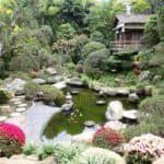 Японский минимализм в ландшафтном дизайне: отличительные черты